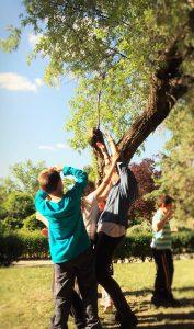 Foto: Arborecer